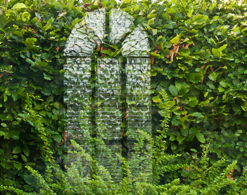 Hedge Window